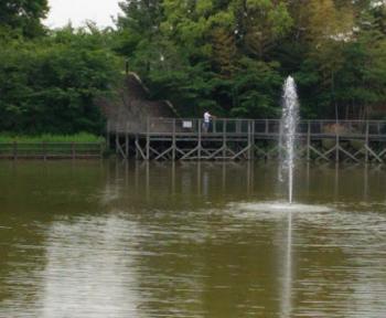 池1 .png