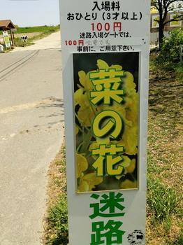 菜の花看板コピー.JPG